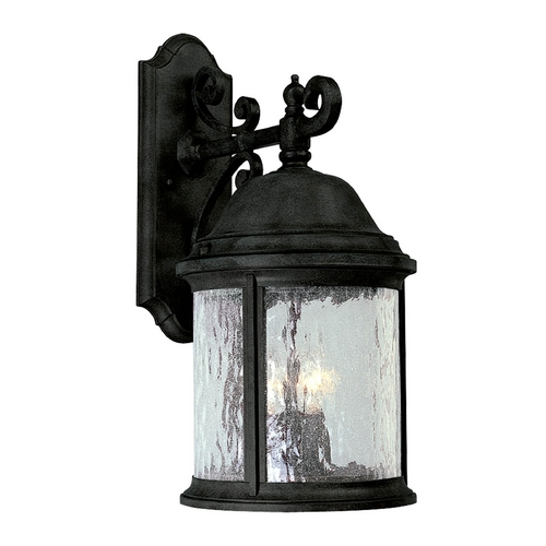 Progress Lighting Progress Outdoor Wall Light with Clear Glass in Textured Black Finish P5651-31