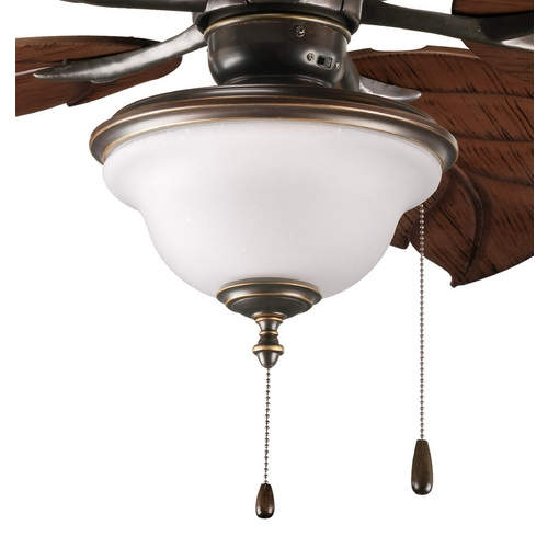 Progress Lighting Progress Ceiling Fan Light Kit with Clear Glass in Antique Bronze P2636-20