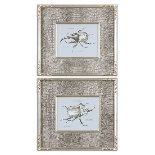 Uttermost Lighting Uttermost Bug Study Framed Art, Set of 2 41528