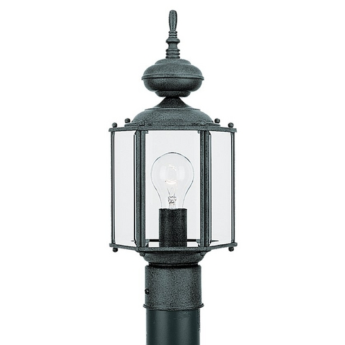 Sea Gull Lighting Post Light with Clear Glass in Black Finish 8209-12