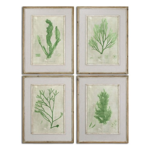 Uttermost Lighting Uttermost Emerald Seaweed Framed Art Set of 4 51092