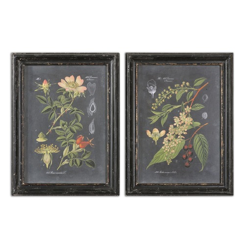 Uttermost Lighting Uttermost Midnight Botanicals Wall Art Set of 2 56053