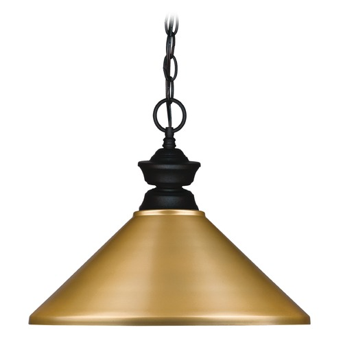 Z-Lite Z-Lite Pendant Lights Matte Black Pendant Light with Coolie Shade 100701MB-MSG