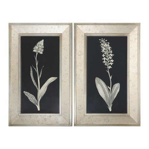 Uttermost Lighting Uttermost Antique Floral Study Framed Art, Set of 2 41529