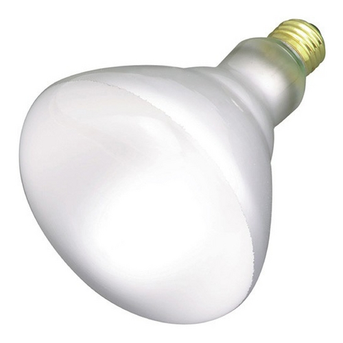 Satco Lighting 65-Watt BR40 Flood Bulb S4453