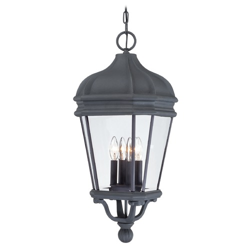 Minka Lavery Outdoor Hanging Light with Clear Glass in Black Finish 8694-66