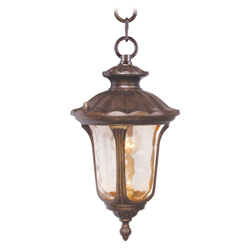 Livex Lighting Livex Lighting Oxford Moroccan Gold Outdoor Hanging Light 7668-50