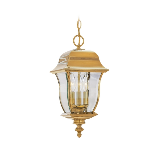 Designers Fountain Lighting Outdoor Hanging Light with Clear Glass in Polished Brass Finish 1554-PVD-PB
