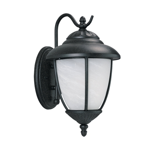 Sea Gull Lighting Outdoor Wall Light with Clear Glass in Forged Iron Finish 84050-185
