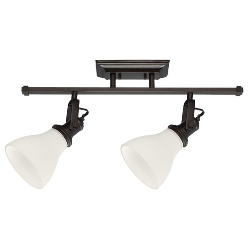 Sea Gull Lighting Sea Gull Lighting Directional Spot Light Burnt Sienna Finish 2520402-710