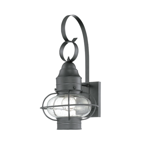 Quoizel Lighting Outdoor Wall Light with Clear Cage Shade in Mystic Black Finish COR8409K