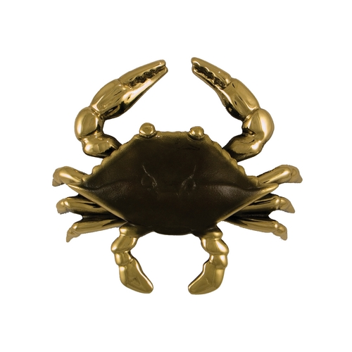 Michael Healy Door Knocker in Brass Finish MH1151