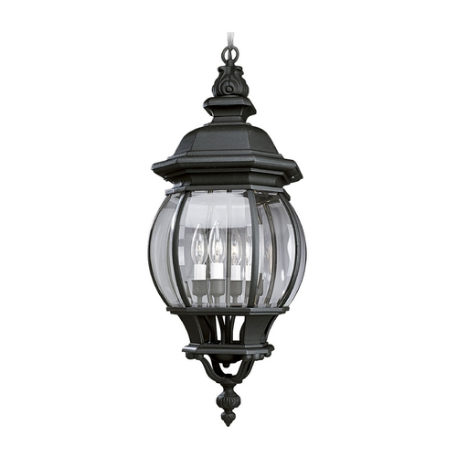 Progress Lighting Progress Outdoor Hanging Light with Clear Glass in Black Finish P5501-31