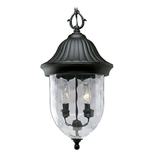 Progress Lighting Progress Outdoor Hanging Light with Clear Glass in Black Finish P5529-31