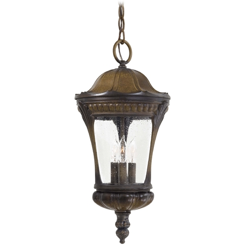 Minka Lavery Outdoor Hanging Light with Clear Glass in Prussian Gold Finish 9144-407