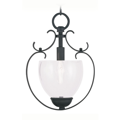 Livex Lighting Livex Lighting Brookside Black Mini-Pendant Light 4800-04