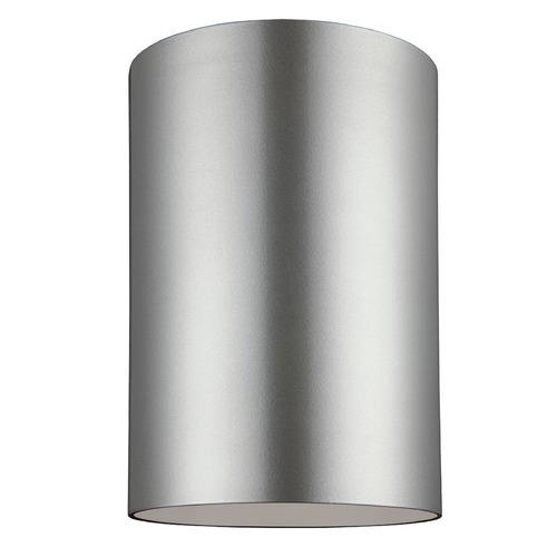 Sea Gull Lighting Sea Gull Lighting Outdoor Bullets Painted Brushed Nickel Close To Ceiling Light 7813901-753