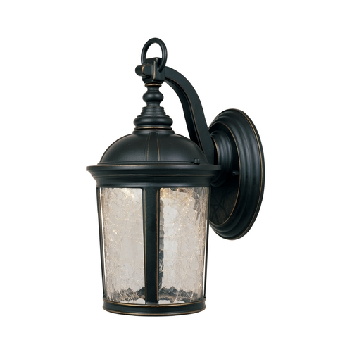 Designers Fountain Lighting LED Outdoor Wall Light with Clear Glass in Aged Bronze Patina Finish LED21331-ABP