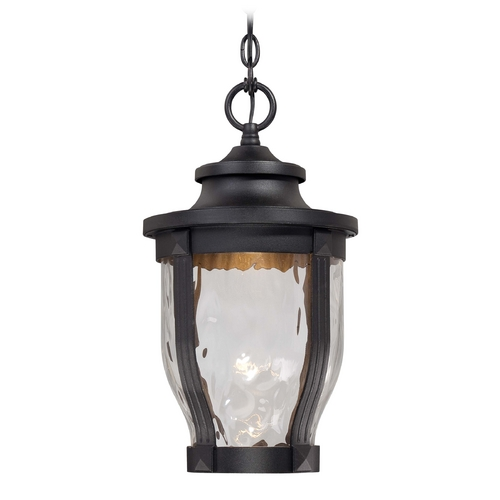 Minka Lavery LED Outdoor Hanging Light with Clear Glass in Black Finish 8764-66-L