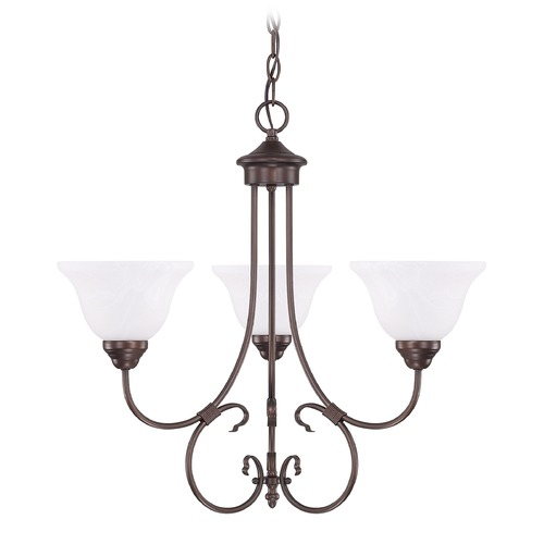 HomePlace by Capital Lighting HomePlace Lighting Homeplace/hometown Bronze Chandelier 3223BZ-220