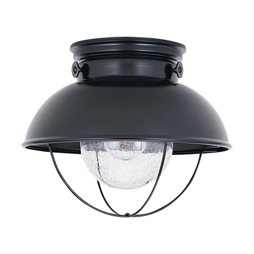 Sea Gull Lighting Close To Ceiling Light with Clear Glass in Black Finish 8869-12