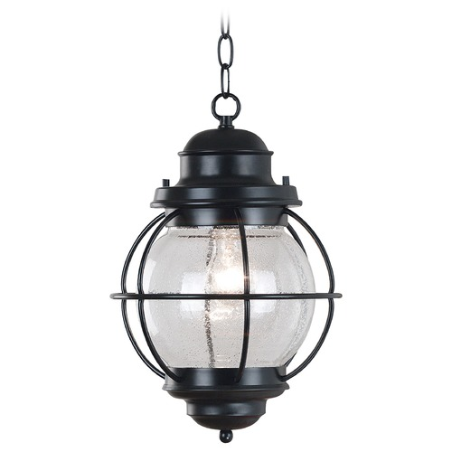 Kenroy Home Lighting Outdoor Hanging Light with Clear Glass in Black Finish 90965BL