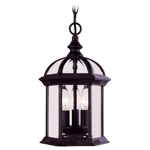 Savoy House Savoy House Textured Black Outdoor Hanging Light 5-0635-BK