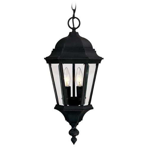 Savoy House Savoy House Textured Black Outdoor Hanging Light 5-1303-BK
