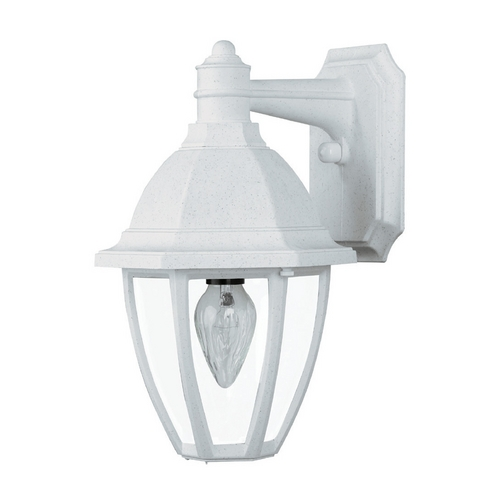 Wave Lighting Outdoor Wall Light with Clear Glass in Whitestone Finish S21VC-WH