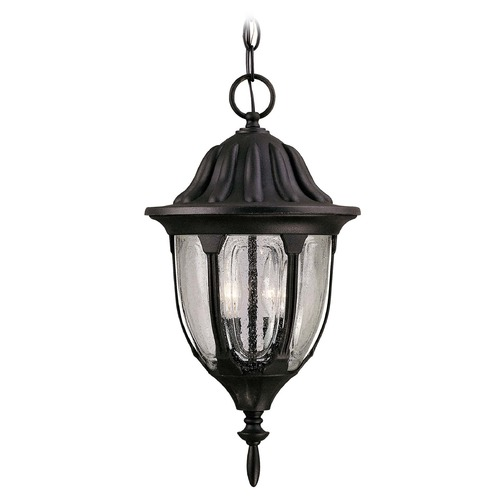 Savoy House Savoy House Textured Black Outdoor Hanging Light 5-1502-BK