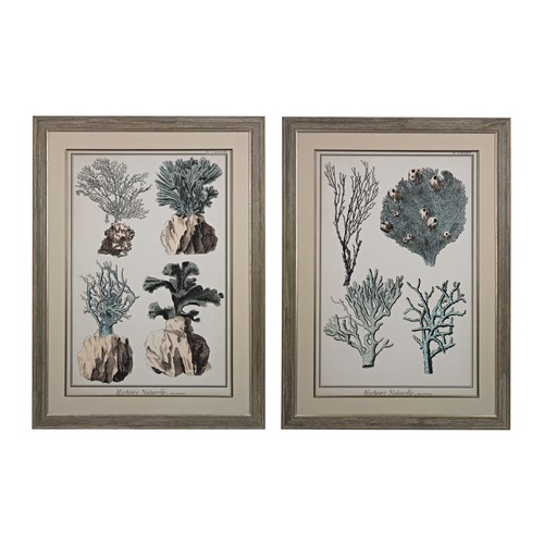 Sterling Lighting Oversized Coral Species I, II - Fine Art Giclee Under Glass 151-008/S2