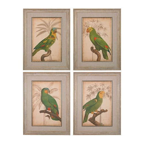 Sterling Lighting Parrot And Palm I, II, III, IV - Fine Art Giclee Under Glass 151-018/S4