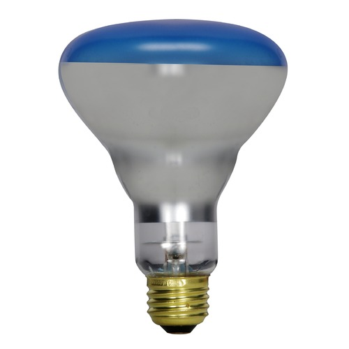 Satco Lighting Incandescent R30 Light Bulb Medium Base Dimmable S2852