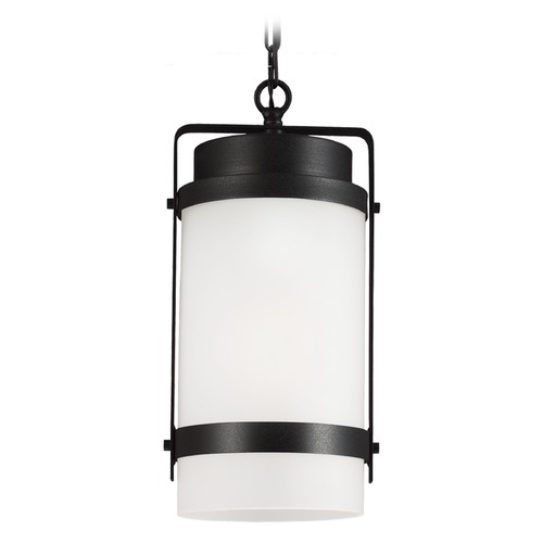 Sea Gull Lighting Sea Gull Lighting Bucktown Black Outdoor Hanging Light 6222401-12