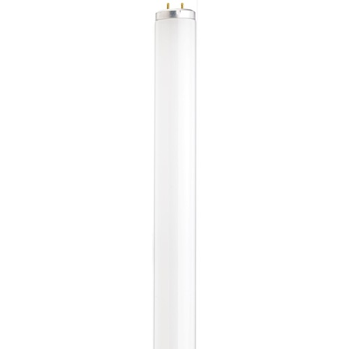 Satco Lighting Satco Lighting Fluorescent Bulb S2927
