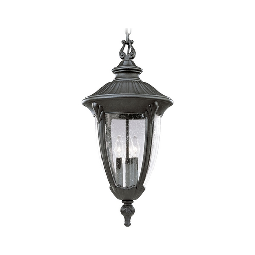 Progress Lighting Progress Outdoor Hanging Light with Clear Glass in Black Finish P5520-31
