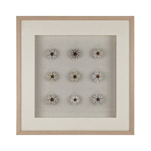 Dimond Lighting Sea Urchin Wall D cor 168-011