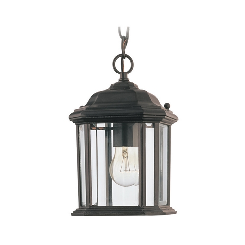 Sea Gull Lighting Outdoor Hanging Light with Clear Glass in Black Finish 60029-12