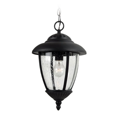Sea Gull Lighting Outdoor Hanging Light with Clear Glass in Black Finish 60068-12