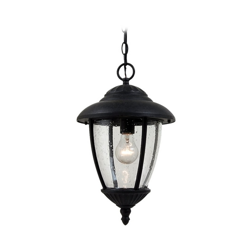 Sea Gull Lighting Outdoor Hanging Light with Clear Glass in Oxford Bronze Finish 60068-746