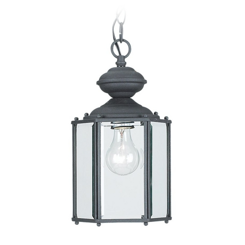 Sea Gull Lighting Outdoor Hanging Light with Clear Glass in Black Finish 6008-12
