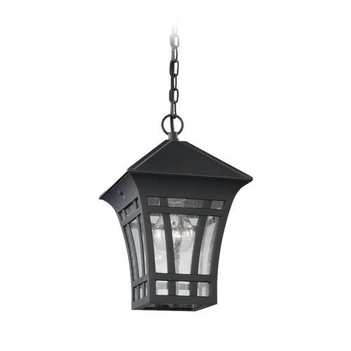 Sea Gull Lighting Outdoor Hanging Light with Clear Glass in Black Finish 60131-12