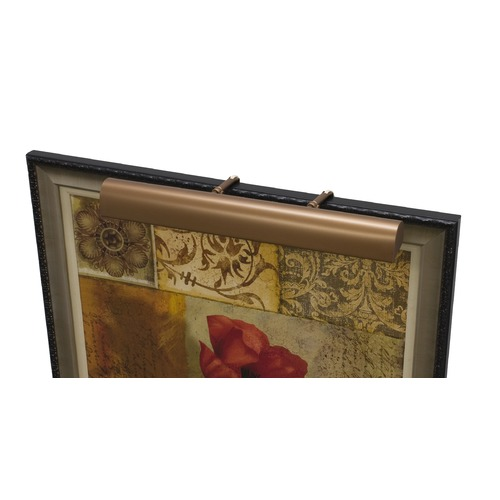 House of Troy Lighting House Of Troy Classic Traditional Bronze Picture Light T21-5-CA