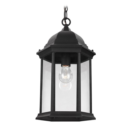 Sea Gull Lighting Sea Gull Lighting Sevier Black Outdoor Hanging Light 6238701-12