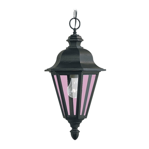 Sea Gull Lighting Outdoor Hanging Light with Clear Glass in Black Finish 6025-12