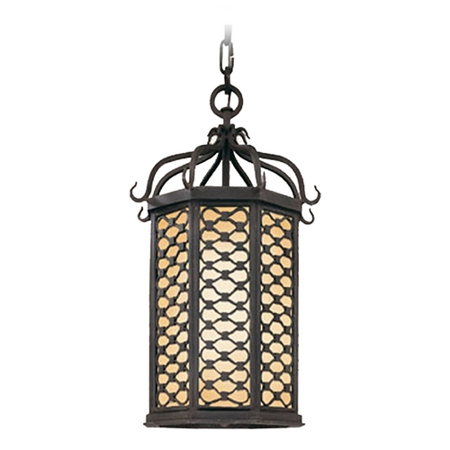 Troy Lighting Outdoor Hanging Light with Clear Glass in Old Iron Finish FF2377OI