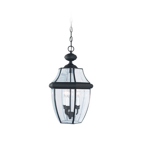 Sea Gull Lighting Outdoor Hanging Light with Clear Glass in Black Finish 6039-12