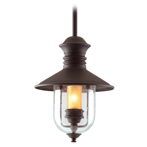 Troy Lighting Outdoor Hanging Light with Clear Glass in Natural Bronze Finish F9362NB