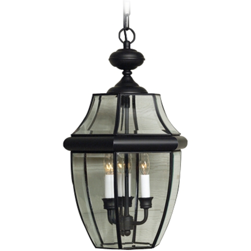 Quoizel Lighting Outdoor Hanging Light with Clear Glass in Mystic Black Finish NY1179K