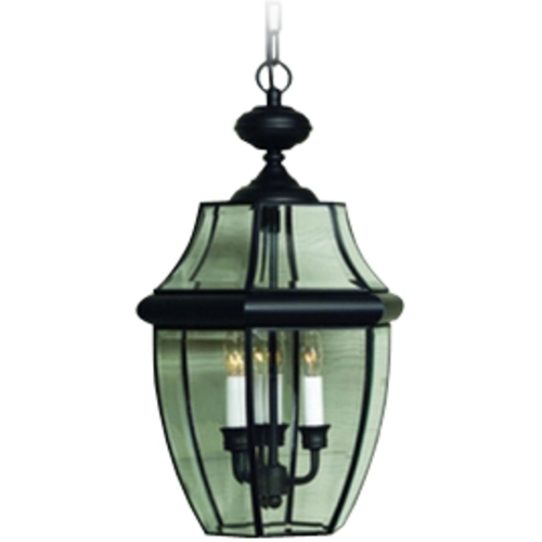Quoizel Lighting Outdoor Hanging Light with Clear Glass in Mystic Black Finish NY1180K